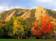 Fall has definitely settled into Boulder, and the colors couldn't be better!