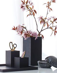 Ikebana, Cool Designs, Display, Plants, Room, Inspiration, Home Decor, Minimalist, Range