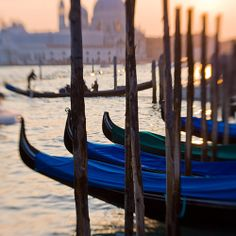 Venice. Via T+L (www.travelandleisure.com).  In March, a ban forbidding the largest cruise ships from entering Venice was lifted, leading to renewed protests by concerned citizens and scientists who claim that the mega ships erode the city's delicate waterways and ecosystem.