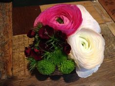 Oggi è il primo Giorno della Merla, secondo la tradizione si tratta dei tre giorni più freddi dell'anno (29 - 30 e 31 gennaio). Molte piante sono in stato di riposo vegetativo, ci si può quindi sbizzarrire con le composizioni floreali: questa ha per protagonisti i ranuncoli, fiori semplici ma eleganti che sbocciano in tardo inverno. #oltreilbalcone #buongiorno #dilloconunfiore