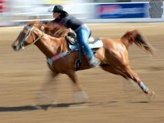 Tuning your finished barrel horse! Free barrel racing tips with Fallon T...
