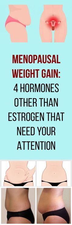 Menopausal Weight Gain: 4 Hormones Other Than Estrogen That Need Your Attention!