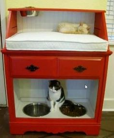 Reuse old dresser for a little kitty haven. Mattress on top for sleeping...and bowls on the bottom for food & water. Brilliant!