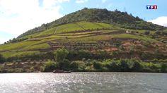 """Voyage au Portugal, au cœur de la vallée du Douro - via TF1 25-10-2016   Au Portugal, le Douro a creusé au fil des siècles une vallée splendide, classée au patrimoine mondial de l'Unesco. A bord d'un """"barco rabelo"""", partez à la découverte des vignes en terrasse et des murs de schiste qui donnent chaque année au célèbre porto, son goût si particulier."""