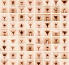 92 Lady Bushes Get Displayed To Spark Debate About Waxing And Modern Feminism