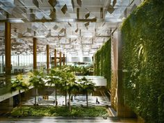 What to do in Changi Airport? — Top 9 best things to do in Changi Airport, Singapore - Living + Nomads – Travel tips, Guides, News & Information! Indoor Garden, Indoor Outdoor, Outdoor Seating, Outdoor Pool, Garden Pots, Vertical Green Wall, Singapore Changi Airport, Singapore Sling, Tabletop