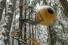 16 Breathtaking Treehouses, courtesy of inthralld. This one almost looks like a jaundiced eyeball!