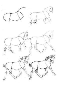 zeichnen lernen – Zeichnen Sie ein Pferd – vol 1621 | Fashion & Bilder