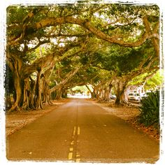 coral gables, this is close to venitian.   maybe fountain and here.