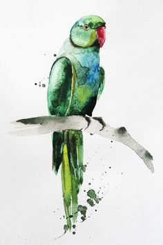 Original watercolor painting parrot. Watercolour art. This is ORIGINAL watercolor painting shows a green big parrot. I hope you enjoyed this watercolor painting. Painting is unframed. The copyright notice will not appear on the painting it is signed, titled and dated on the back. Will be carefully packaged and shipped by Registered International Mail with tracking number. Please note! That colors may vary slightly from what you see on your monitor. All my watercolor without frame. Frame a...