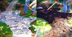 Ditch The Digging With This Brilliant Newspaper Garden