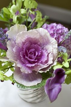 Ornamental cabbage is stunning with complimentary flower colors ~ Jay Lugibihl