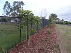 Chainwire fencing has always been a popular type of fence. Chainwire fencing is used around tennis courts, industrial and office buildings and schools. Fencing Supplies, Types Of Fences, Chain Link Fence, Large Animals, Sidewalk, Security Fencing, Building, Larger, Diamonds