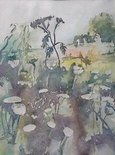 Milfoils, watercolor, 2016