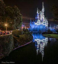 Disney Word, Walt Disney Co, Disney Parks, Disney World Pictures, Disney Images, Sleeps Till Christmas, Anaheim California, Disney Background, Disney World Magic Kingdom