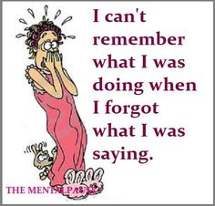 Memory problems afflict so many of us for various reasons. Mine would be due to Fibromyalgia . . . but I want to maintain my humour about it for as long as possible!