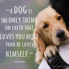 A dog is the only thing on earth that loves you more than he loves himself. Can't wait till I can get a puppy someday!