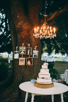 Our Wedding, cake, naked cake, vintage, rustic, family tree, chandelier, vintage wedding, southern wedding, outdoor wedding