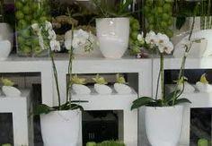 flower shop window display Jane Packer