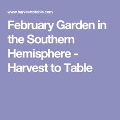 February Garden in the Southern Hemisphere - Harvest to Table