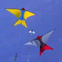 Zwaluw by Jan van Leeuwen, a plan for 1 line kite hosted at the bowed category of the KPB