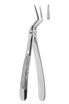 Extracting Forceps English pattern / We offer a full range of Surgical and Dental Instruments specially tailored to the need of our valued client's innovative thinking, professional approach and years of experience has enabled us to put all the sectors of production together like a jigsaw.