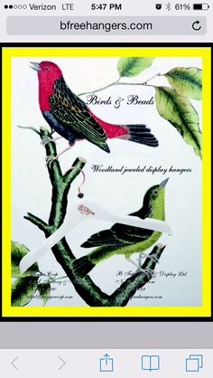 Birds and Beads