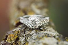 Halo diamond engagement ring with side stones //  Jordan and Mercy's Engagement Shoot in California