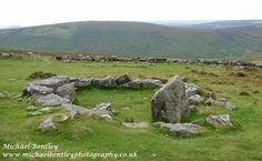Grimspound, Dartmoor. Grimspound is a walled Bronze Age village consisting of the remains of many round houses like this one.