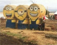 Funny Minions pictures jokes (10:52:16 AM, Monday 03, August 2015 PDT) – 10 pics
