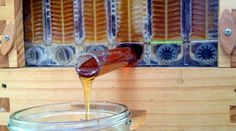 Honey on Tap. Easy on the bees and the beekeepers. No muss, no fuss. #honeyontap