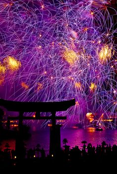 Art Purple Craze by Scott Smith, via Illuminations Japan Pavilion Epcot World Showcase Walt Disney World, FL *-*. purple-just-purple Purple Love, All Things Purple, Purple Rain, Purple Colors, Purple Flowers, Orlando, Parc A Theme, Fire Works, To Infinity And Beyond