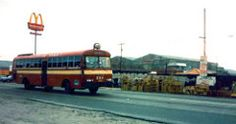 rabbit 84 Buses, Philippines, Evolution, Rabbit, Photo And Video, Bunny, Rabbits, Bunnies, Busses