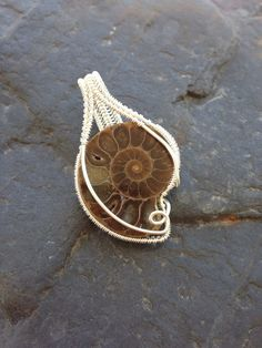 Wire Wrapped Pendant, Ammonite Pendant, Wire Wrap Ammonite, Fossil Jewelry, Wire…