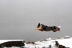 Jumper by Hans-Joachim Brünig, via 500px