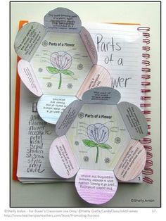 Parts of a Flower Diagram Interactive Notebook Activity Science Plants Unit Science Classroom, Teaching Science, Science Education, Teaching Resources, Teaching Ideas, Parts Of A Flower, Parts Of A Plant, 4th Grade Science, Middle School Science
