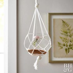 macrame planter with air plant octopus