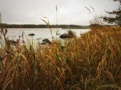 Vihovuonne, Heinävesi
