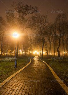 The avenue of city park at night ... <p>The avenue of city park at night</p> Streetlamp, alley, autumn, avenue, beam, bench, branch, bright, bulb, city, cityscape, country, dawn, fall, fantasy, fog, foliage, forest, garden, golden, illumination, lamp, light, lighted, lush, mist, mystery, nature, night, outdoor, park, path, public, road, rocks, scenic, season, sidewalk, spring, square, street, streetlight, track, travel, tree, ukraine, urban, walk, way, woods