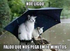 ...a chuva não para, e nem os memes! Veja o post completo…