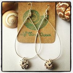 Sterling Silver Tear Drop Puka Shell Earrings $20