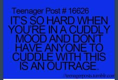 Cuddly outrage