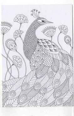 Yetişkinler Için Tavus Kuşu Boyama örneği Mandala Pinterest