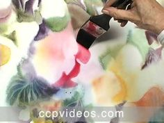 Videos   Acuarela Online