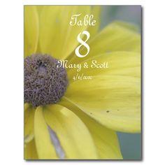 Yellow rudbeckia blossom postcards