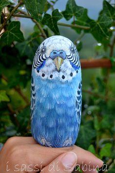 Pappagallino dipinto su sasso...such a realistic looking bird!!