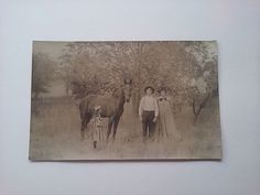 Kruxo Photo Post Card Rppc Early 1900s Antique Horse Child Mom Dad Family #people