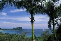Costa Rica, Manuel Antonio National Park, Pacific Ocean and palm trees - Kevin Schafer/Photographer's Choice/Getty Images