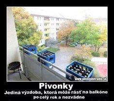 Pivonky