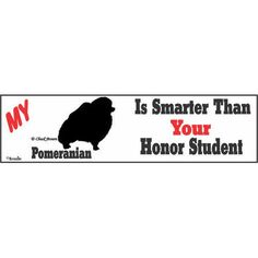 "Our Price $1.99  ID: 201100011059  This ""My Pomeranian is Smarter than Your Honor Student"" bumper sticker is a great way to show off your pride in how smart your favorite family member is. This humorous 3"" x 11"" vinyl sticker can be displayed anywhere  http://www.calendars.com/Pomeranians/Pomeranian-Honor-Bumper-Sticker/prod201100011059/?categoryId=cat10137=cat10137"